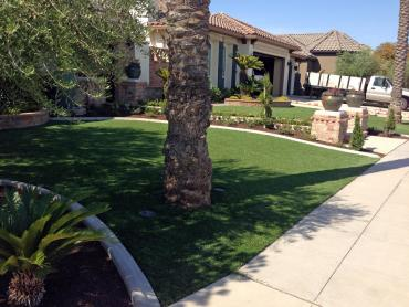 Artificial Grass Photos: Artificial Grass Carpet Bradenton Beach, Florida Lawns, Front Yard Landscaping Ideas