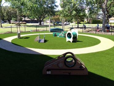 Artificial Grass Photos: Artificial Grass Carpet Crystal Lake, Florida Landscaping Business, Commercial Landscape