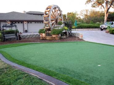 Artificial Grass Photos: Artificial Grass Carpet Paisley, Florida Roof Top, Landscaping Ideas For Front Yard