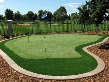 Artificial Grass Photos: Artificial Grass Carpet Palmona Park, Florida Garden Ideas, Backyard Makeover