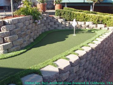 Artificial Grass Photos: Artificial Grass Carpet Progress Village, Florida City Landscape, Backyard Designs