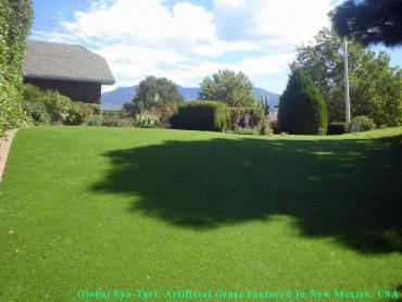 Artificial Grass Photos: Artificial Grass Installation Carrollwood, Florida Pet Paradise, Backyard Landscaping