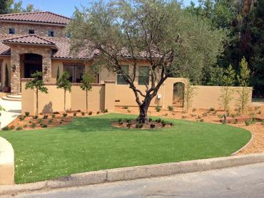 Artificial Grass Photos: Artificial Grass Installation Eagle Lake, Florida Landscaping, Front Yard Design