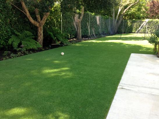 Artificial Grass Photos: Artificial Grass Installation Immokalee, Florida Garden Ideas