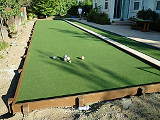 Artificial Grass Photos: Artificial Grass Installation Lake Alfred, Florida Landscape Ideas, Backyard Landscape Ideas