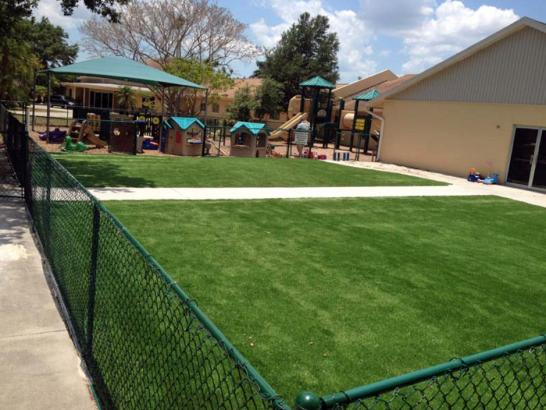 Artificial Grass Photos: Artificial Grass Installation Wiscon, Florida Garden Ideas, Commercial Landscape