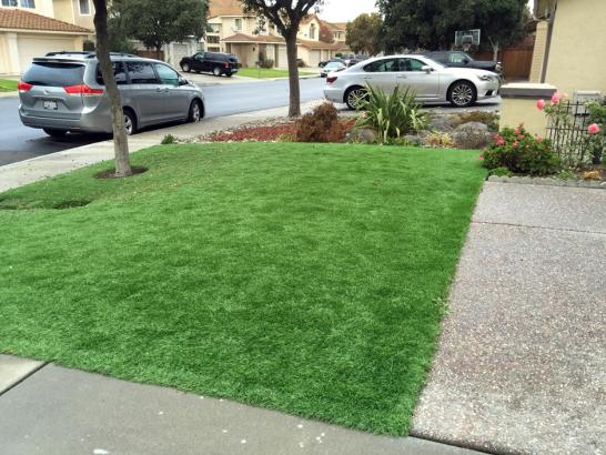 Artificial Grass Photos: Artificial Grass Inwood, Florida Landscaping, Front Yard Landscaping