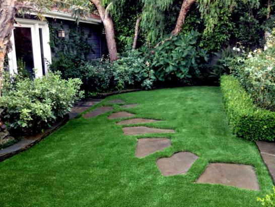 Artificial Grass Photos: Artificial Grass Jasmine Estates, Florida Landscape Rock, Small Backyard Ideas
