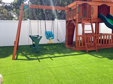 Artificial Grass Photos: Artificial Grass Maitland, Florida Upper Playground, Backyard
