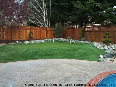 Artificial Grass Mango, Florida Putting Greens, Backyard Designs artificial grass