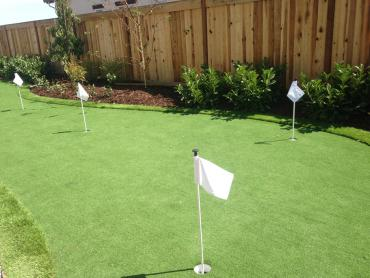 Artificial Grass Photos: Artificial Grass Otter Creek, Florida Outdoor Putting Green, Beautiful Backyards