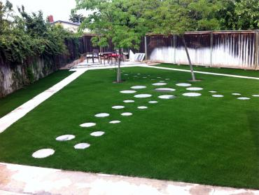 Artificial Grass Photos: Artificial Lawn Cortez, Florida Home And Garden, Pavers