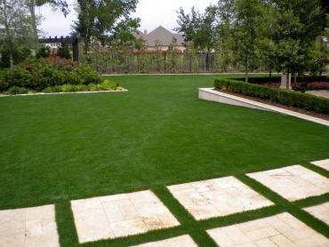 Artificial Grass Photos: Artificial Lawn Dunedin, Florida Roof Top, Backyard