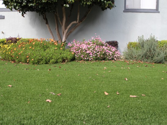 Artificial Grass Photos: Artificial Lawn Grove City, Florida Roof Top, Front Yard Landscaping