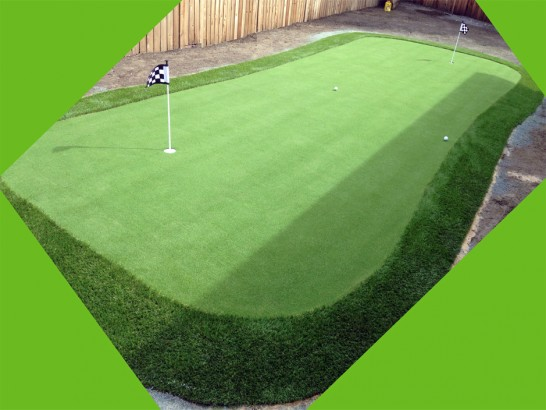Artificial Lawn Harbour Heights, Florida Putting Green Turf artificial grass