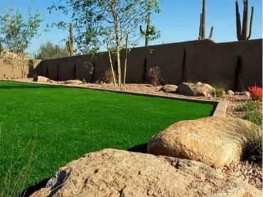 Artificial Grass Photos: Artificial Lawn Indian Harbour Beach, Florida Gardeners, Backyard Garden Ideas