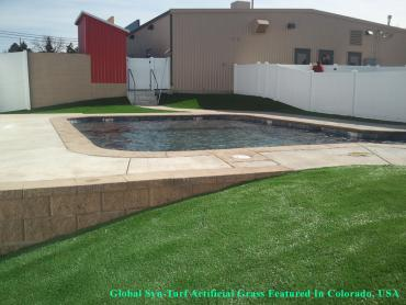 Artificial Grass Photos: Artificial Turf Cost Greater Northdale, Florida Rooftop, Natural Swimming Pools