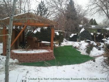 Artificial Grass Photos: Artificial Turf Cost Westchase, Florida City Landscape, Backyard Designs