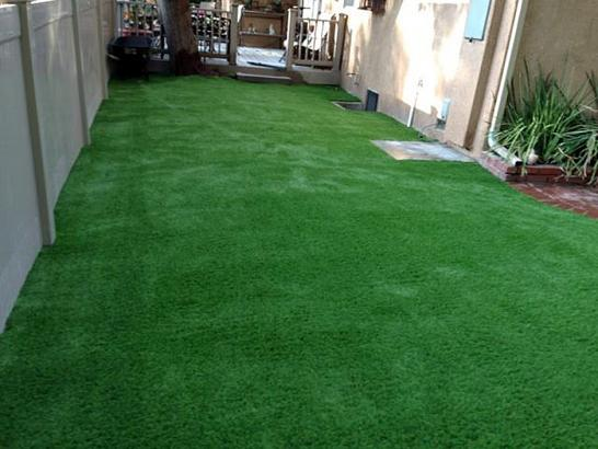 Artificial Grass Photos: Artificial Turf Installation Bradenton Beach, Florida Landscape Ideas, Backyard Ideas