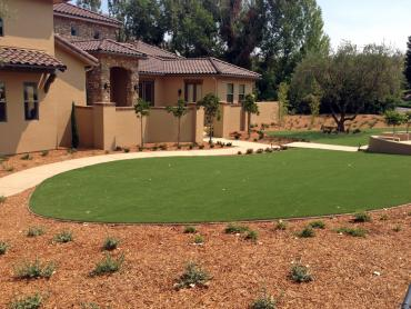 Artificial Grass Photos: Artificial Turf Installation North Weeki Wachee, Florida Home And Garden, Front Yard Landscaping Ideas