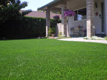 Artificial Grass Photos: Artificial Turf Lake Buena Vista, Florida Lawns, Front Yard Landscape Ideas