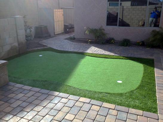 Artificial Grass Photos: Artificial Turf Ridge Manor, Florida Home Putting Green, Backyard Landscaping