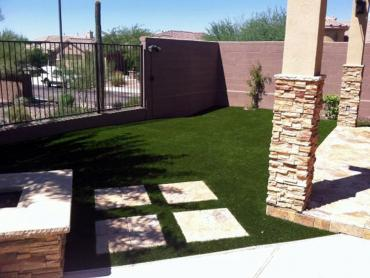 Artificial Grass Photos: Artificial Turf Sarasota, Florida Garden Ideas, Backyard Ideas