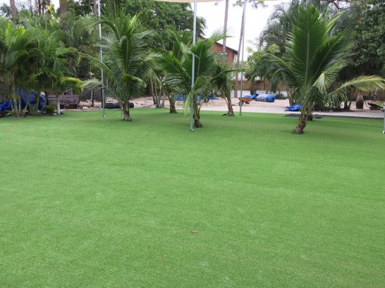 Artificial Grass Photos: Artificial Turf Union Park, Florida Landscape Ideas, Commercial Landscape