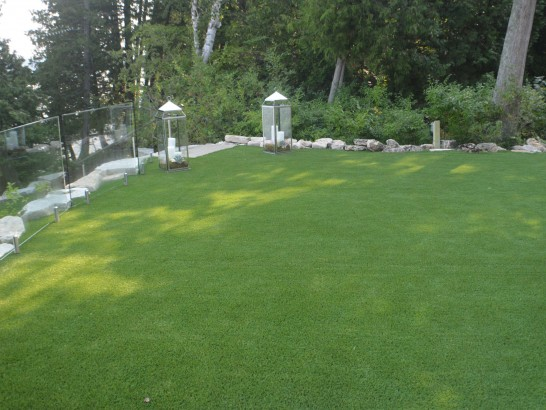 Artificial Grass Photos: Best Artificial Grass Paisley, Florida Landscaping Business, Backyard