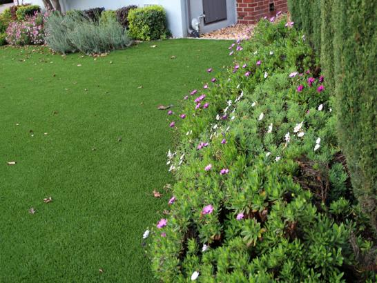 Artificial Grass Photos: Best Artificial Grass South Sarasota, Florida Lawns, Front Yard Landscaping
