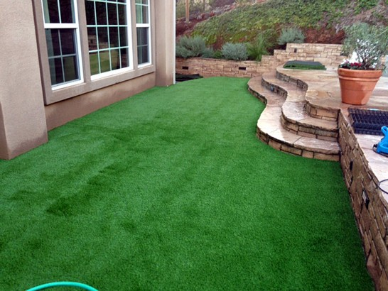 Artificial Grass Photos: Fake Grass Carpet Beverly Hills, Florida Garden Ideas, Small Backyard Ideas