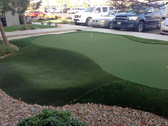 Artificial Grass Photos: Fake Grass Carpet Brandon, Florida Rooftop, Commercial Landscape