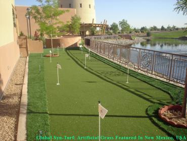 Fake Grass Carpet East Lake-Orient Park, Florida Design Ideas, Backyard Landscaping artificial grass