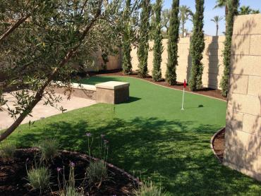 Artificial Grass Photos: Fake Grass Carpet Fellsmere, Florida Backyard Putting Green, Backyard Ideas