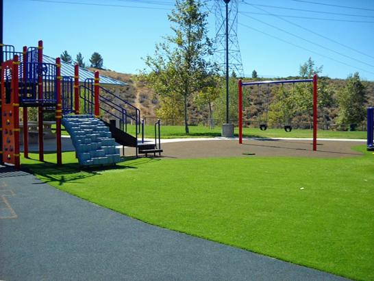Artificial Grass Photos: Fake Grass Carpet Medulla, Florida Indoor Playground, Recreational Areas