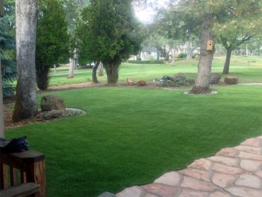 Artificial Grass Photos: Fake Grass Groveland, Florida Paver Patio, Front Yard Landscape Ideas