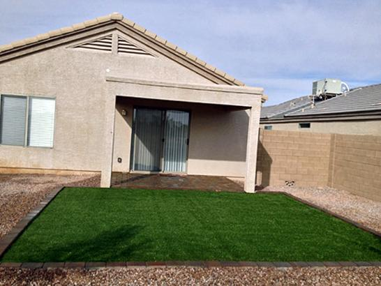 Artificial Grass Photos: Fake Grass Istachatta, Florida Dog Hospital, Backyard Design