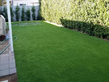 Artificial Grass Photos: Fake Grass McIntosh, Florida Fake Grass For Dogs, Backyard Designs