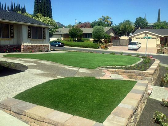 Artificial Grass Photos: Fake Lawn Bay Pines, Florida Garden Ideas