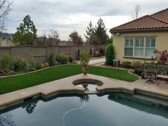 Artificial Grass Photos: Fake Lawn Groveland, Florida Landscape Design, Swimming Pools