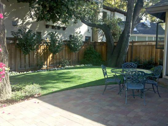 Artificial Grass Photos: Fake Lawn Redington Shores, Florida, Backyard Makeover