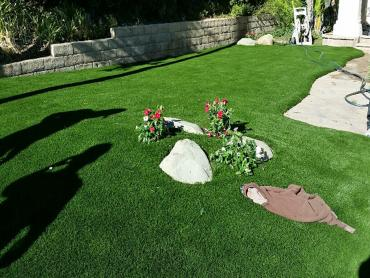 Artificial Grass Photos: Fake Turf Cypress Lake, Florida Lawn And Garden, Front Yard Landscaping Ideas