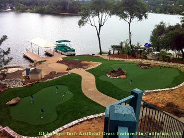 Artificial Grass Photos: Fake Turf Gibsonton, Florida Landscape Photos, Backyard Landscaping Ideas