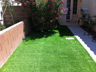 Artificial Grass Photos: Fake Turf Tangelo Park, Florida Rooftop, Front Yard Landscaping Ideas