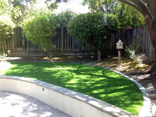 Artificial Grass Photos: Fake Turf Temple Terrace, Florida Landscape Design, Commercial Landscape