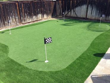 Artificial Grass Photos: Faux Grass Belleair Shore, Florida Indoor Putting Green, Backyard Landscaping Ideas