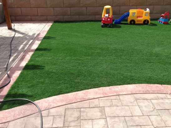 Artificial Grass Photos: Faux Grass Fern Park, Florida Rooftop, Backyard Design