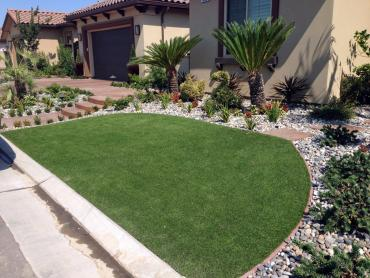 Artificial Grass Photos: Faux Grass Fruitville, Florida Lawns, Front Yard Landscape Ideas