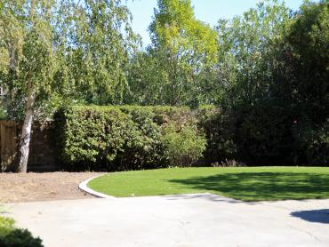 Artificial Grass Photos: Faux Grass Rockledge, Florida Landscape Design, Backyards