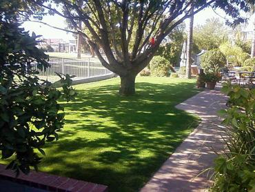 Artificial Grass Photos: Grass Carpet Apopka, Florida Lawn And Landscape